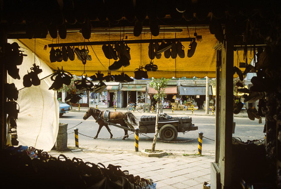 Horse pulling cart full of coal yuntans or coal Echoes of Jeju: A Photo Essay of Korean Island Life in 1979 (Part 1)