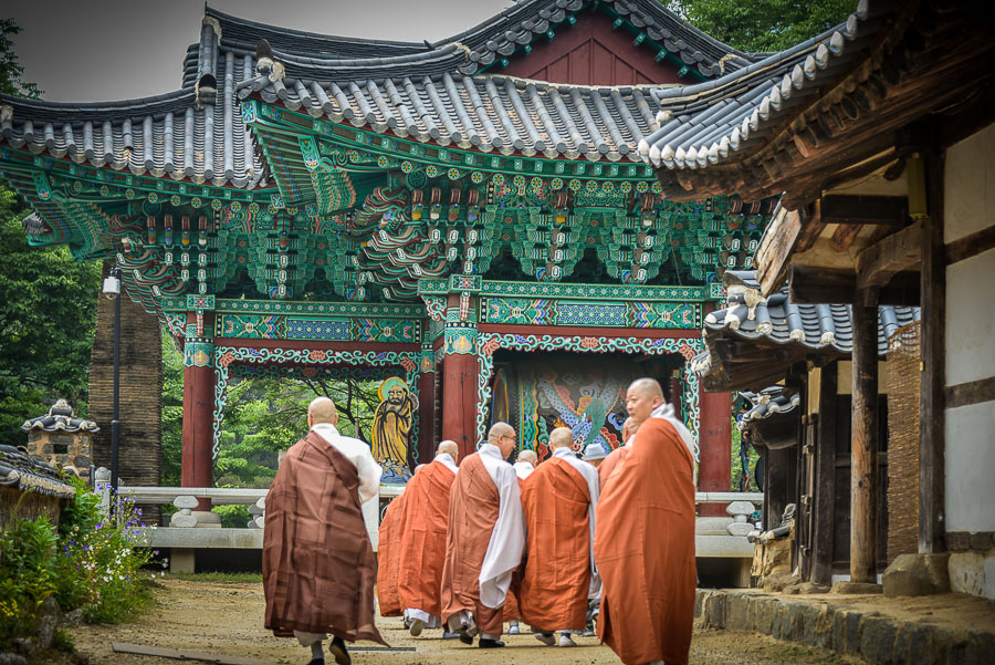 Monks in front of bell tower Bridge to Paradise: A Korean Temple Stay at Magoksa