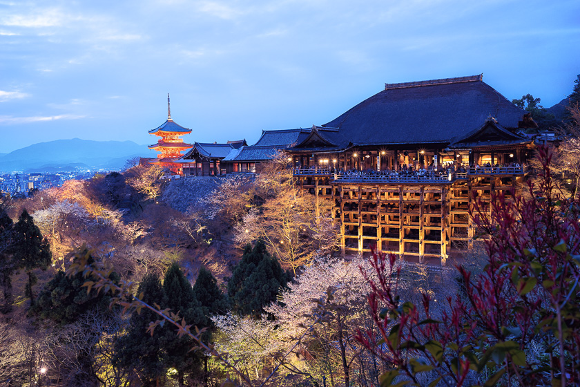 Kiyomizu-dera, Peter DeMarco, blossoms, blue hour, cherry, japan, kyoto, night, photography, temple, tips, travel, tutorials
