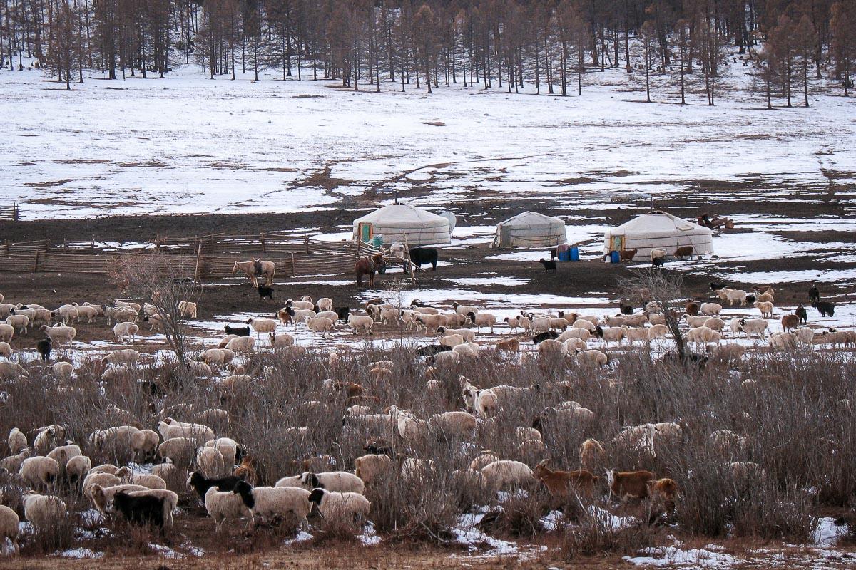 Khangain Nuruu National Park, Mongolia, Nomads, asia, photography, tips, travel